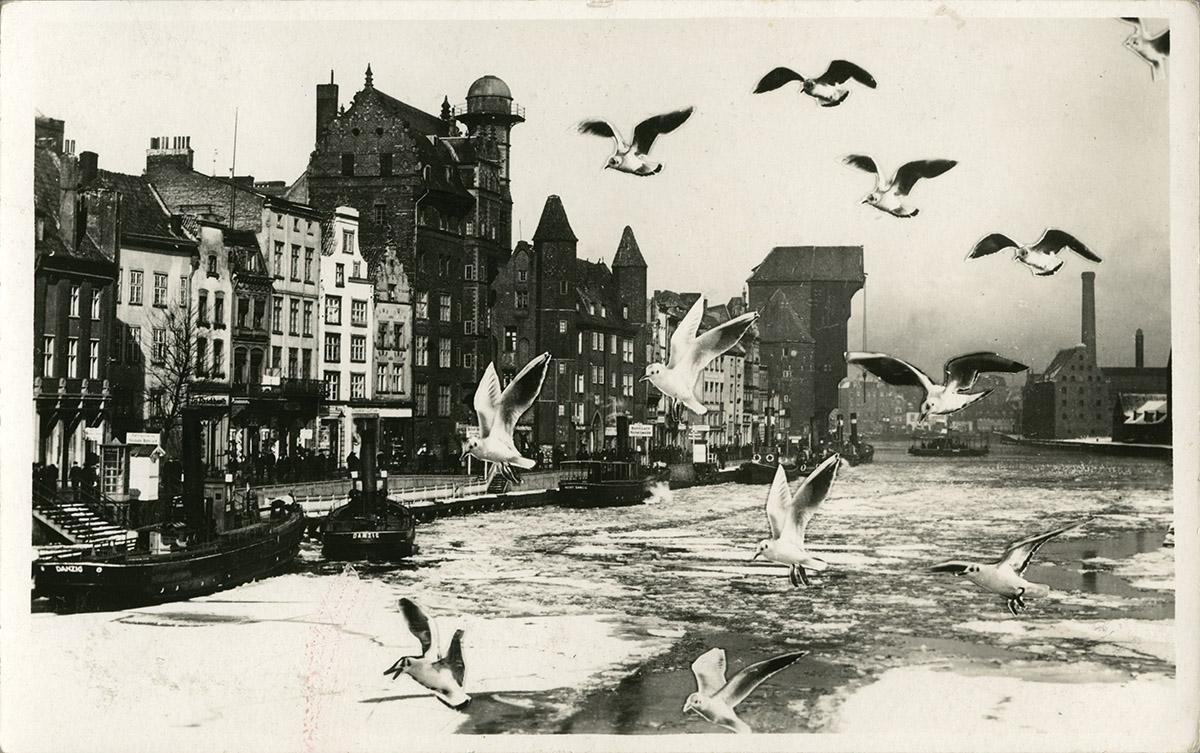 Czarnecki - oryginalna fotografia z fotomontażem